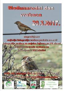 poster vrabci